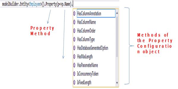 Entity Type Property Configuration